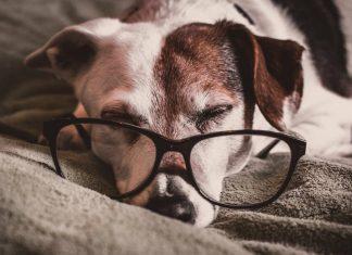 Seven bad habits of intelligent people