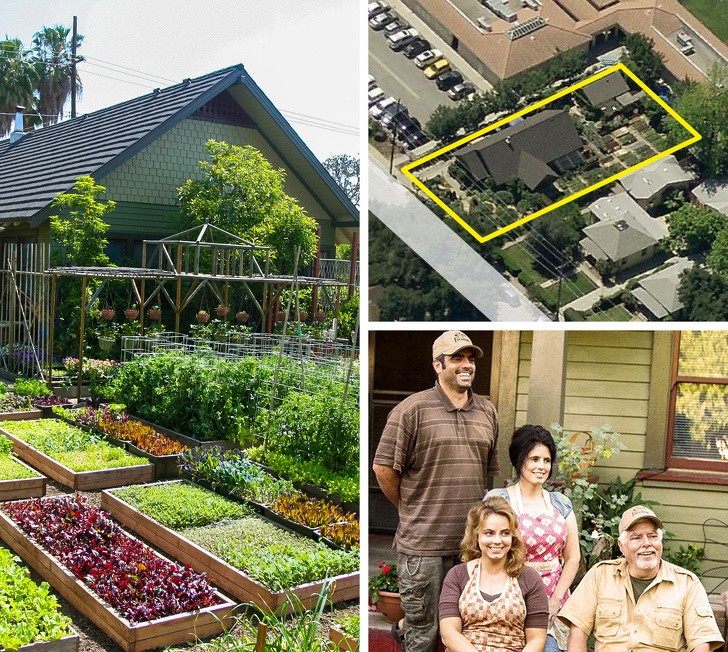 family grows tons of vegetables to supply surrounding restaurants