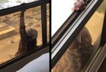 Instead Of Helping Her, This Woman Films Maid Fall From 7th Floor Window Read more at: https://www.social-consciousness.com/2017/04/instead-of-helping-her-this-woman-films-maid-fall-from-7th-floor-window.html