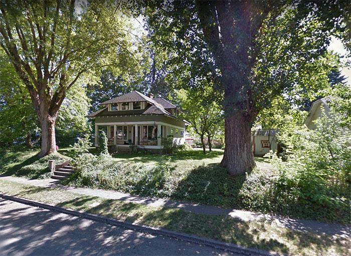 #house #trees