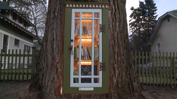 #Little #Free #Library