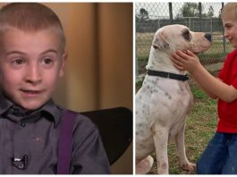 7-Year-Old Wins ASPCA Award For Rescuing More Than 1,300 Dogs From High-Kill Shelters