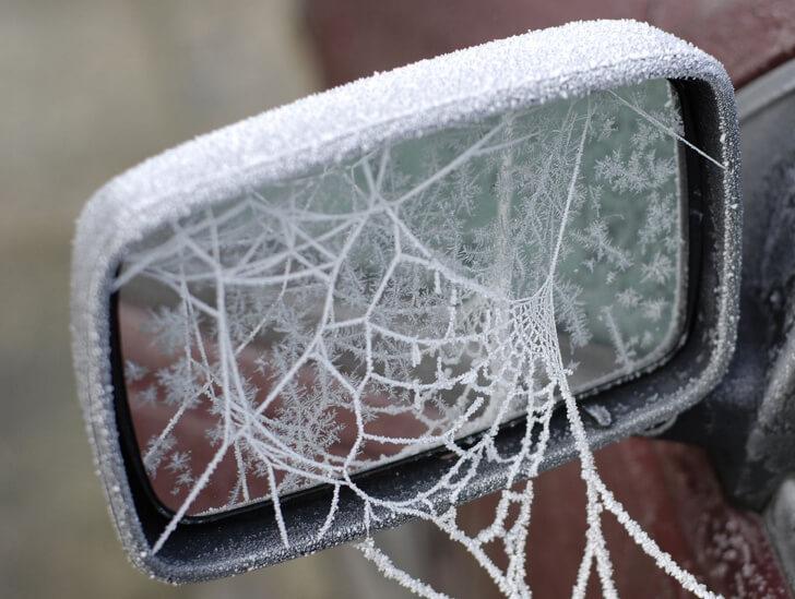 spider web side mirror