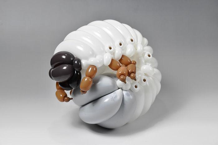 Beetle Larva