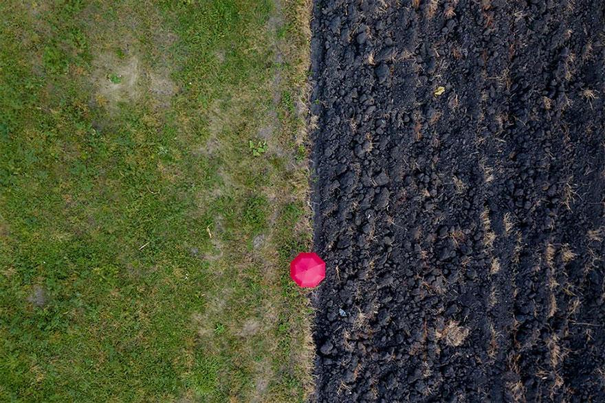 Red Umbrella field