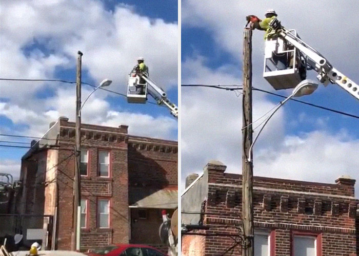 man working on a telephone pole