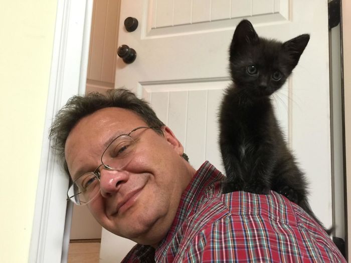 black cat on shoulder