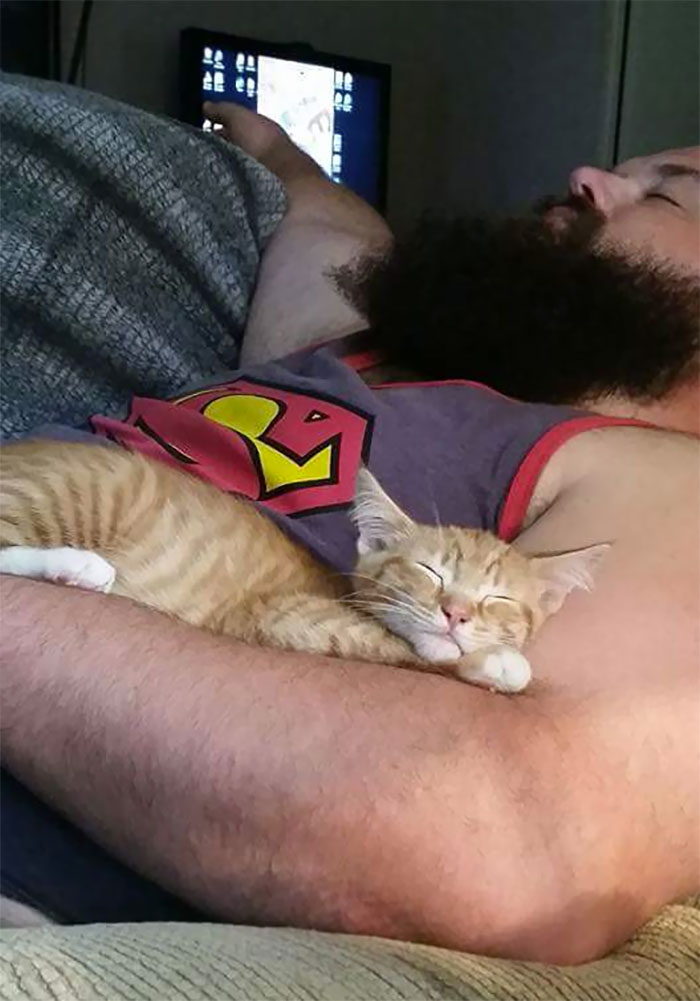 cat with beard man