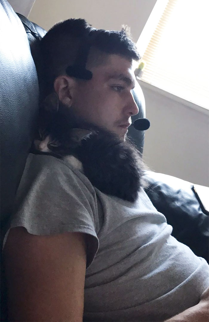 cat on chest