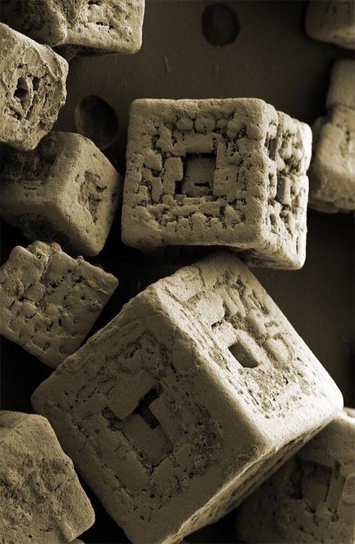 Grains Of Salt Under Electron Microscope
