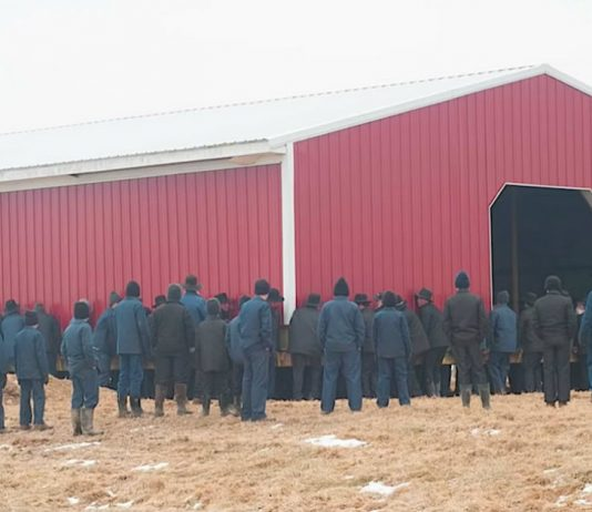 250 Amish Men Lift Barn With Their Bare Hands And Carry It Across Ohio Farm To Its New Spot