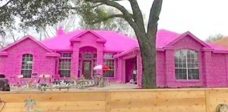 Man Covers Dream House In Pepto-Bismol Pink, And Angry Neighbors Can't Do Anything About It