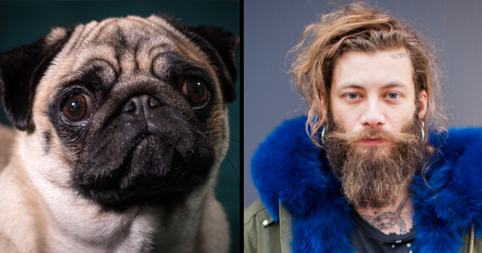 Researchers Show That Men With Beards Carry More Germs Than Dogs