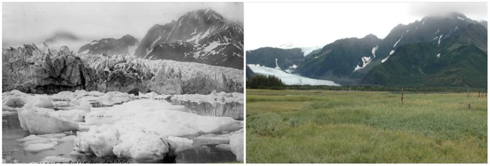 Pedersen Glacier, Alaska. Summer,1917 – Summer, 2005