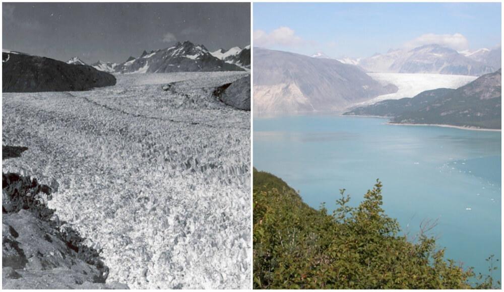 Muir Glacier, Alaska. August 1941- August 2004