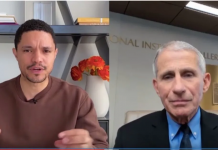 Can we have daily briefings with just Trevor Noah, Dr. Fauci, and no one else? Please?