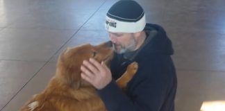 Dog Overflows With Joy As He's Reunited With His Human Dad After 20 Months
