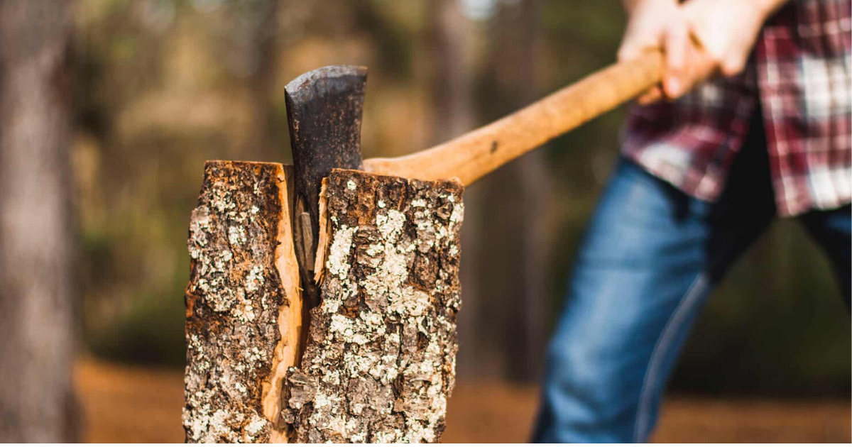 Use a Splitting Maul to Chop Wood for Firewood