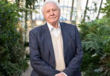 Sir David Attenborough To Teach Geography On BBC Online Lessons