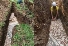 Ancient Mosaic Floor Discovered Beneath Italian Vineyard