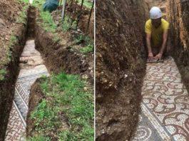 Ancient Mosaic Floor Discovered Beneath Italian Vineyard