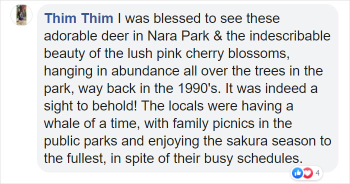 People's reactions to deer