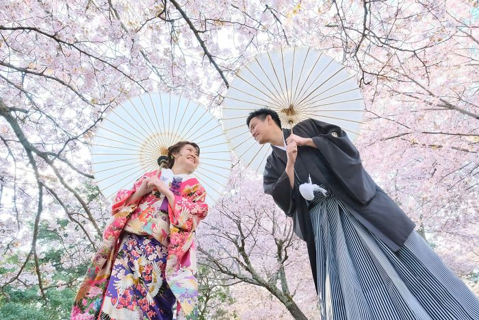 Couple under cherry blossoms