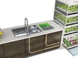 Hydroponic Indoor Gardening Kit Lets You Grow Vegetables Anytime