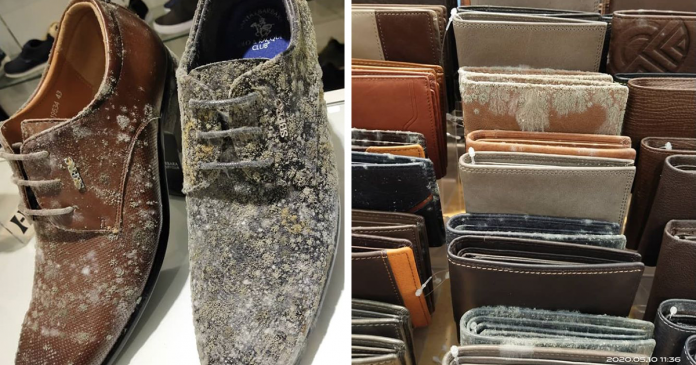 Business Discovers All Leather Products Molded After Lockdown