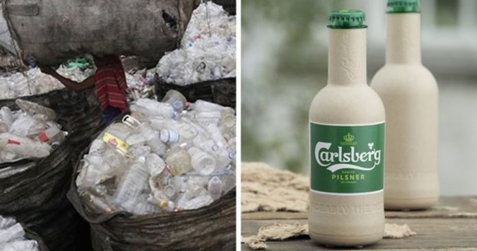 Coca-Cola And Carlsberg Introduce Plant-Based Biodegradable Bottles