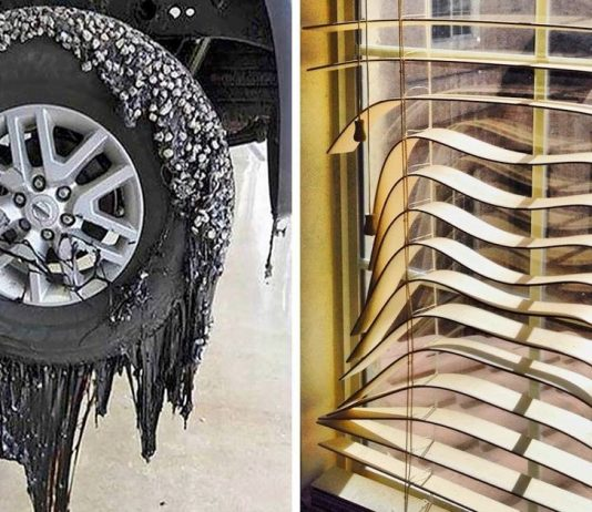 15 Photos That Prove Heat Doesn't Spare Anything