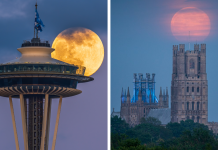 20 Stunning Photos Of The Last Supermoon Of 2020 Caught On Camera
