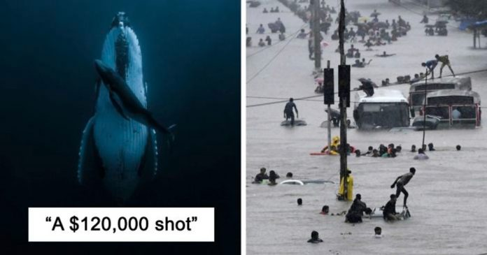 Aspiring Female Photographer Wins $120,000 Grand Prize: HIPA Contest Season 9
