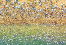 20 Of The Most Breathtaking Entries Of The Aerial2020 Contest