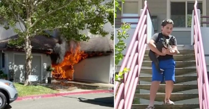 11-Year-Old Boy And His Dog Save Neighbor's Home From A Destructive Fire